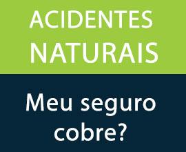 meu-seguro-cobre-acidentes-naturais